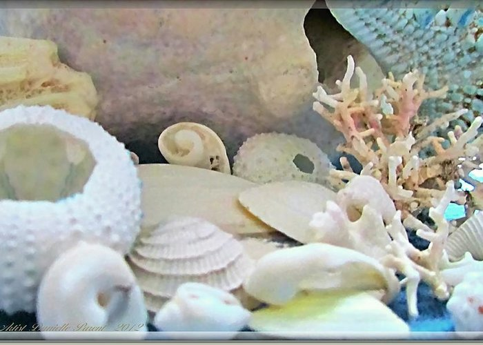 Urchin Greeting Card featuring the photograph Shells In Pastels by Danielle Parent