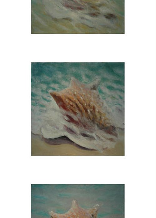 Set Greeting Card featuring the painting Shells Triptych 2 by Don Young