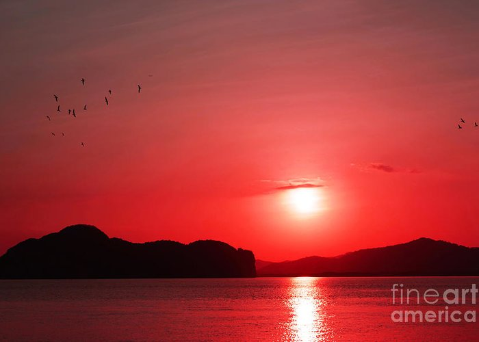 Photography Greeting Card featuring the photograph Shepherd's Delight Sunset by Kaye Menner