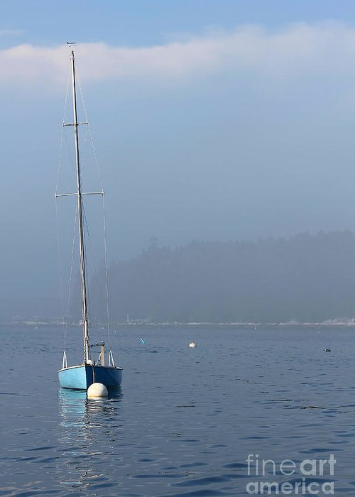 Sailboat Greeting Card featuring the photograph Sill Boat In Maine by Heidi Piccerelli