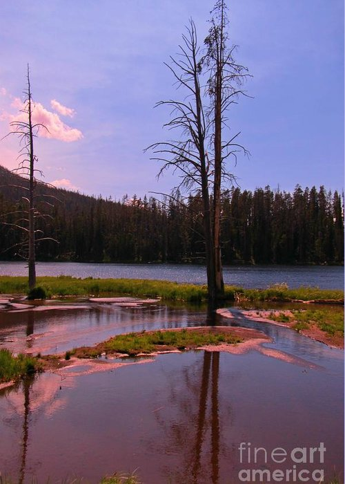 Simple Beauty Of Yellowstone Greeting Card featuring the photograph Simple Beauty Of Yellowstone by John Malone