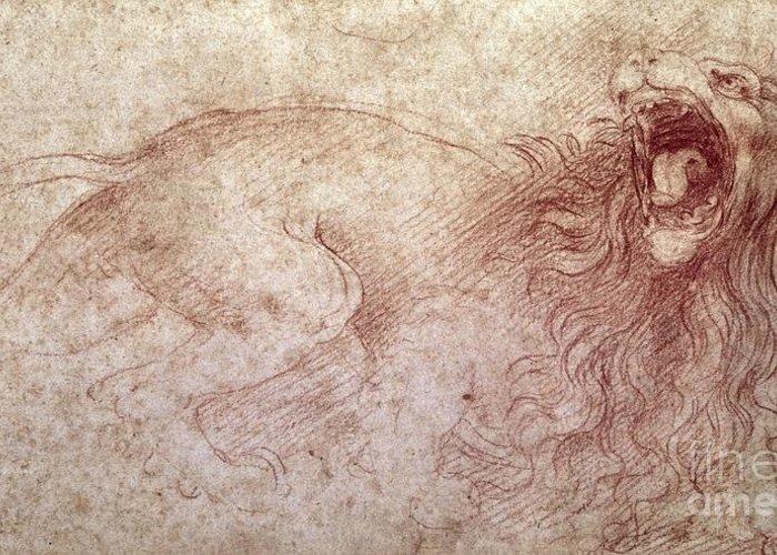 Leonardo Greeting Card featuring the drawing Sketch Of A Roaring Lion by Leonardo Da Vinci