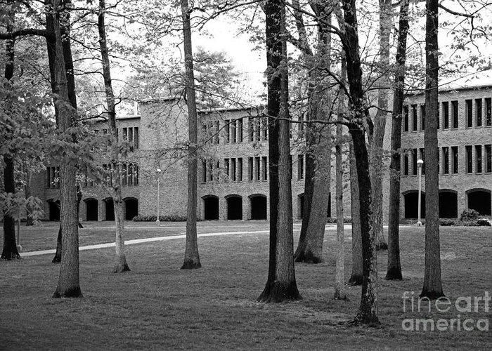 New York Greeting Card featuring the photograph Skidmore College Dana Science Center by University Icons
