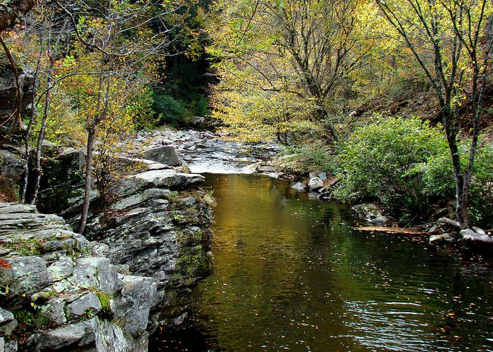 Creek Greeting Card featuring the photograph Smoky Mountian River by Sandy Keeton