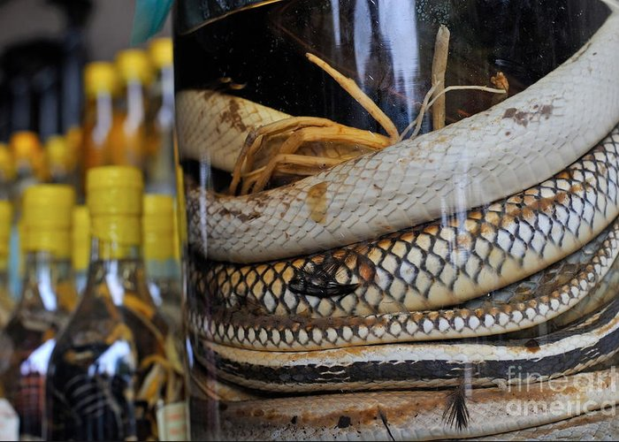 Alcohol Greeting Card featuring the photograph Snakes In Snake-flavoured Alcohol Bottles by Sami Sarkis