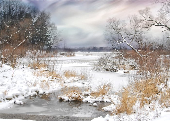 Winter. Snow. Lake Greeting Card featuring the photograph Snow Lake by Mary Timman