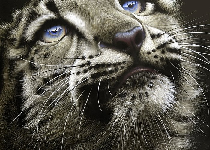 Snow Leopard Cub Greeting Card featuring the painting Snow Leopard Cub by Jurek Zamoyski
