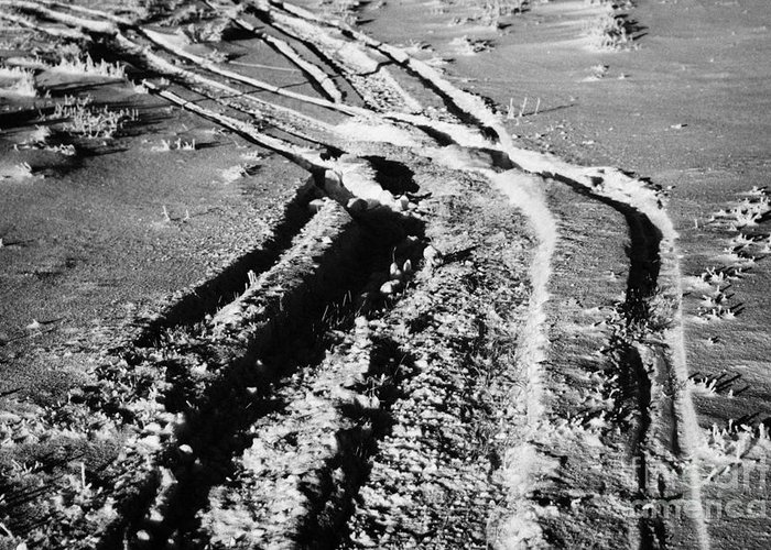 Snowmobile Greeting Card featuring the photograph snowmobile tracks in snow across frozen field Canada by Joe Fox