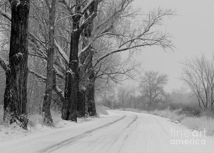 Snowy Country Road Greeting Card featuring the photograph Snowy Country Road - Black And White by Carol Groenen