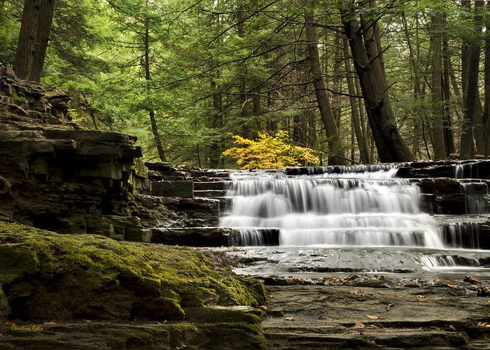 Waterfall Greeting Card featuring the photograph Soothing Waters by Christina Rollo