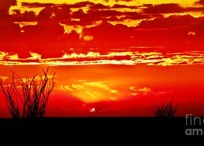 Arizona Greeting Card featuring the photograph Southwest Sunset by Robert Bales
