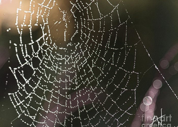 Spider Web Greeting Card featuring the photograph Spiderweb Green by Artist and Photographer Laura Wrede