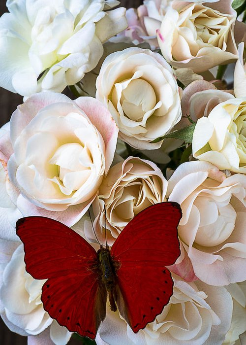 Spray Roses Greeting Card featuring the photograph Spray Roses And Red Butterfly by Garry Gay
