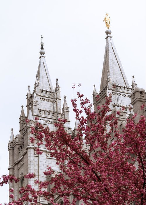Spring At The Temple Greeting Card featuring the photograph Spring At The Temple by Chad Dutson