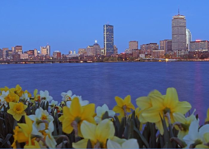 Spring Greeting Card featuring the photograph Spring Into Boston by Juergen Roth