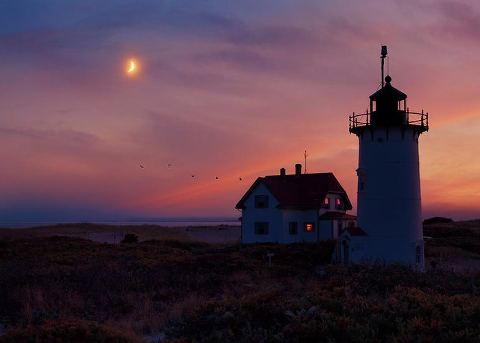 Race Point Light Greeting Card featuring the photograph Standing Guard by Bill Wakeley