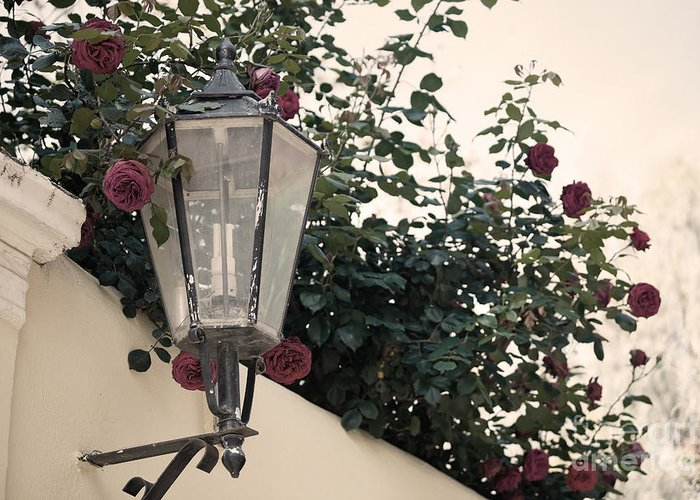 Streetlight Greeting Card featuring the photograph Streetlight Surrounded By Roses by Aiolos Greek Collections