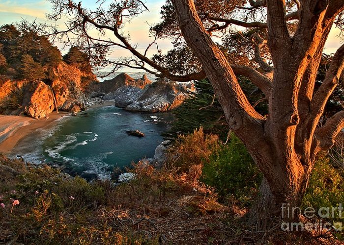 Mcway Falls Greeting Card featuring the photograph Sunset At Mcway Falls by Adam Jewell