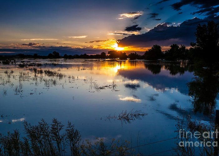 Nature Greeting Card featuring the photograph Sunset Reflections by Steven Reed