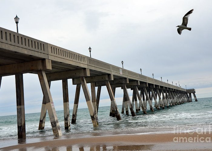 Ocean Photography Greeting Card featuring the photograph Surreal Blue Sky Ocean Coastal Fishing Pier Seagull North Carolina Atlantic Ocean by Kathy Fornal