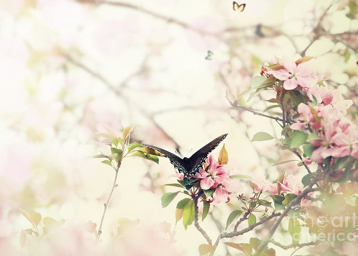 Butterflies Greeting Card featuring the photograph Swallowtail In Spring by Stephanie Frey