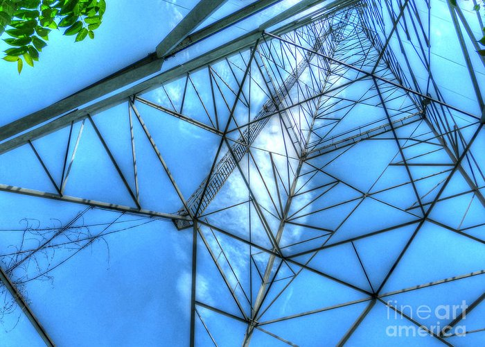 Mj Olsen Greeting Card featuring the photograph Tangled Web by MJ Olsen