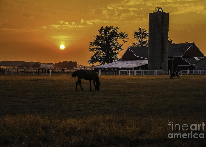 M.c. Story Greeting Card featuring the photograph The Beauty Of A Rural Sunset by Mary Carol Story