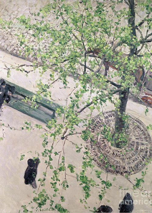 Street Scene Greeting Card featuring the painting The Boulevard Viewed From Above by Gustave Caillebotte