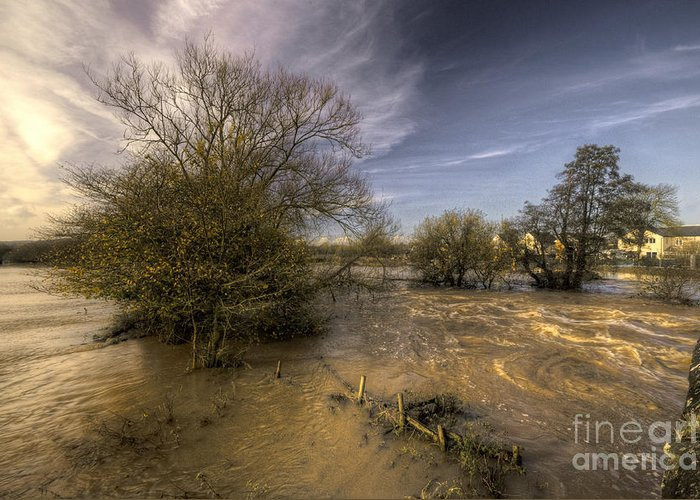 Stoke Canon Greeting Card featuring the photograph The Floods At Stoke Canon by Rob Hawkins