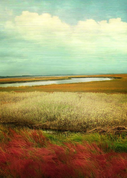 Landscape Greeting Card featuring the photograph The Low Country by Amy Tyler