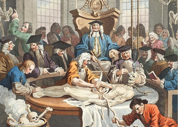 Anatomy Lesson Greeting Card featuring the drawing The Reward Of Cruelty, From The Four by William Hogarth