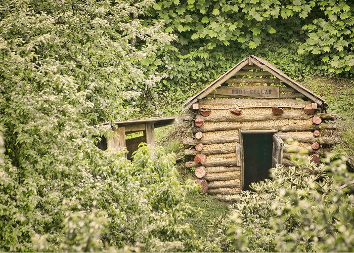 Rustic Greeting Card featuring the photograph The Root Cellar by Heather Applegate