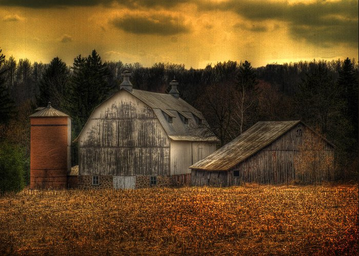 Farm Greeting Card featuring the photograph The Rose Farm by Thomas Young