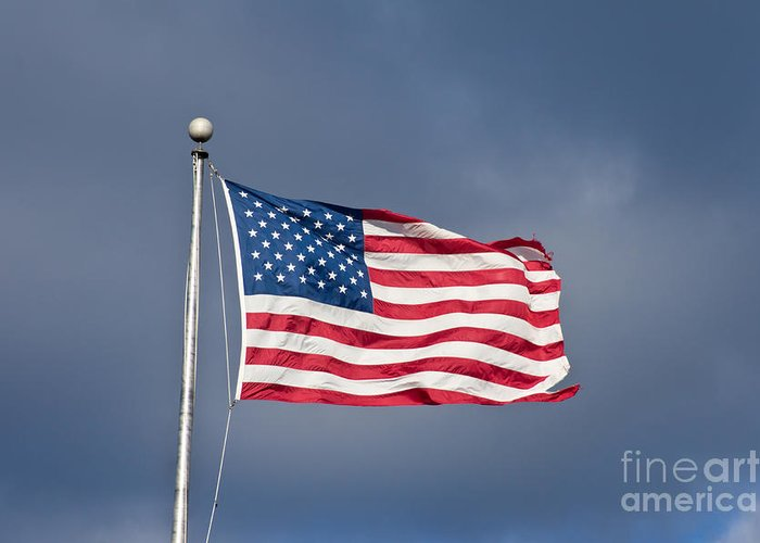 America Greeting Card featuring the photograph The United States Of America by Benjamin Reed