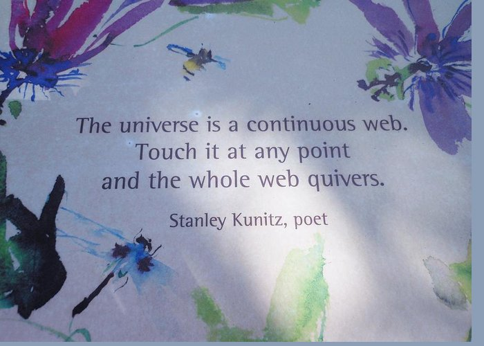 Poem Greeting Card featuring the photograph The Universe by Kay Gilley