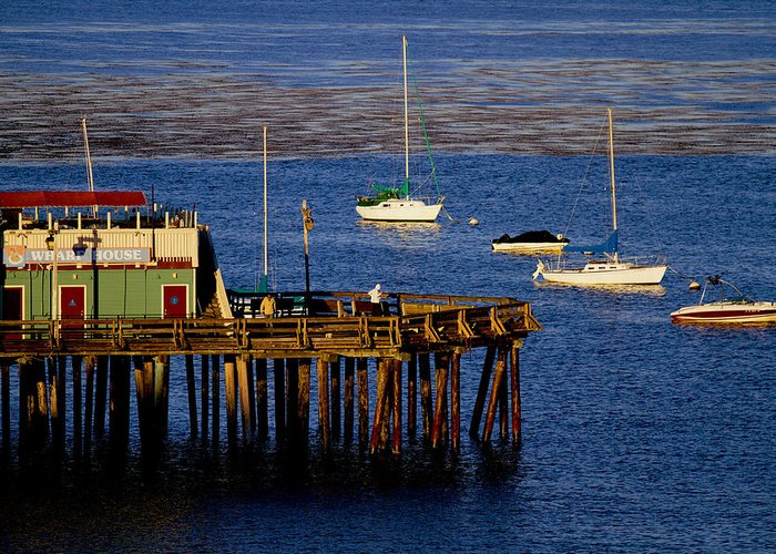 Wharf Greeting Card featuring the photograph The Wharf by Tom Kelly