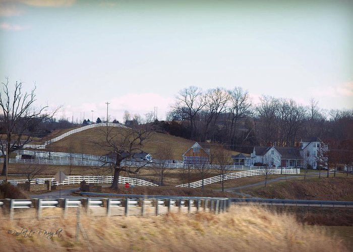 Featured Greeting Card featuring the photograph Thoroughbred Thoroughfares by Paulette B Wright
