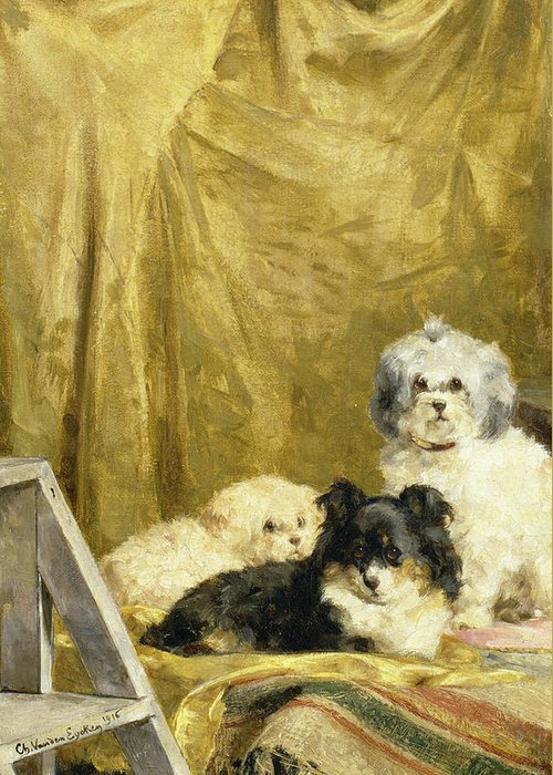Trumpet Greeting Card featuring the painting Three Dogs by Charles van den Eycken