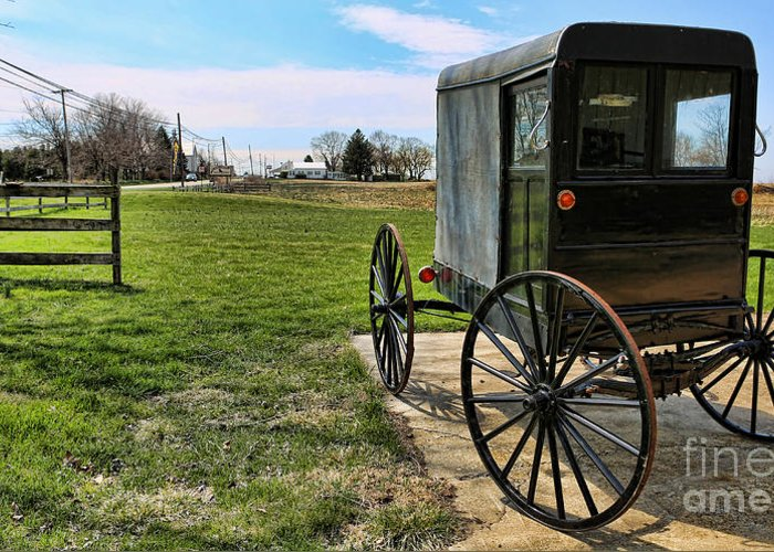 Amish People Greeting Card featuring the photograph Traditional Amish Buggy by Lee Dos Santos