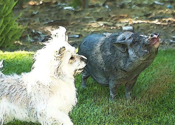 Pig Greeting Card featuring the photograph Treats For Woody And Schnitzel by Artist and Photographer Laura Wrede