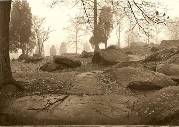 Devils Den Greeting Card featuring the photograph Tree And Steps At Devils Den - Gettysburg by Jan W Faul