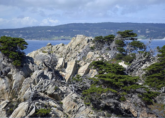 Point Lobos Greeting Card featuring the photograph Trees Amidst The Cliffs In California's Point Lobos State Natural Reserve by Bruce Gourley