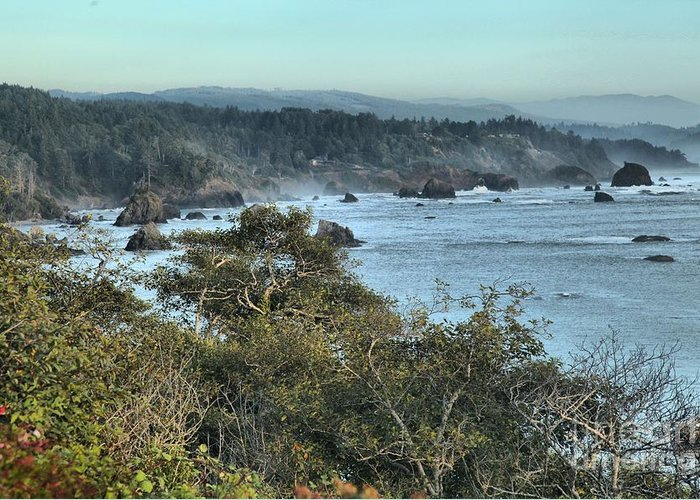 Trinidad State Beach Greeting Card featuring the photograph Trinidad Beach Landscape by Adam Jewell