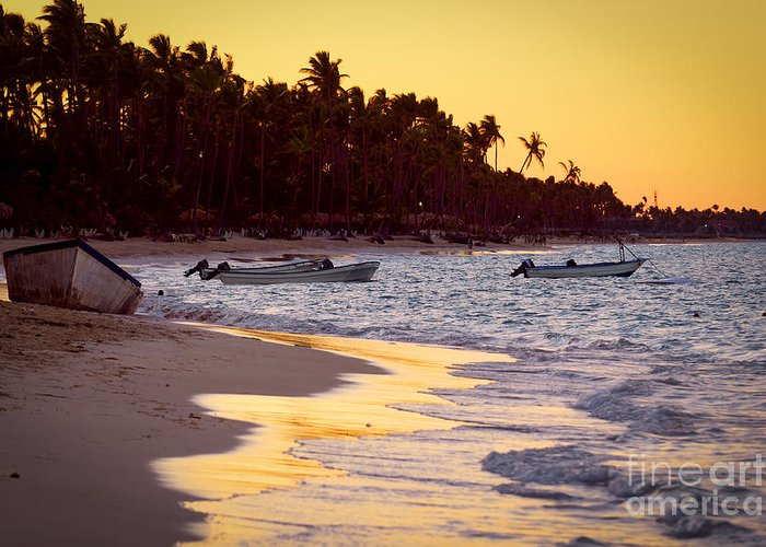 Beach Greeting Card featuring the photograph Tropical Beach At Sunset by Elena Elisseeva