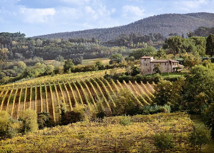 Tuscany Greeting Card featuring the photograph Tuscan Valley by Dave Bowman