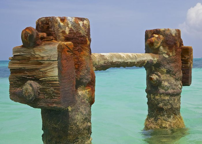 Aruba Greeting Card featuring the painting Twin Rusted Dock Piers Of The Caribbean by David Letts