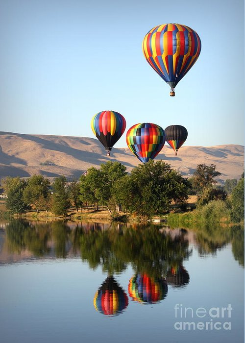 Prosser Greeting Card featuring the photograph Up Up And Away by Carol Groenen