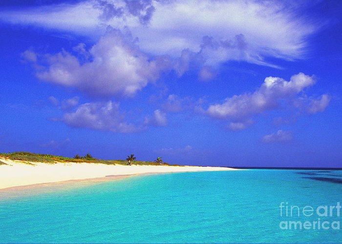 Upper Shoal Bay Greeting Card featuring the photograph Upper Shoal Bay by Thomas R Fletcher