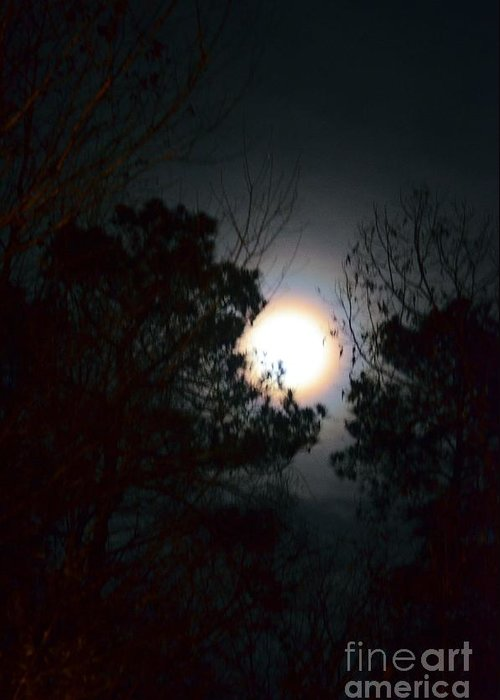 Valley Of The Moon Greeting Card featuring the photograph Valley Of The Moon by Maria Urso