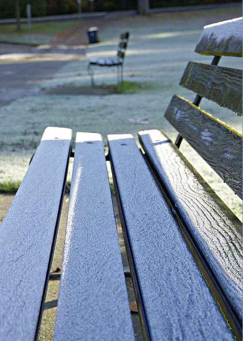 Bench Greeting Card featuring the photograph Vancouver Frosty Morning by Marilyn Wilson